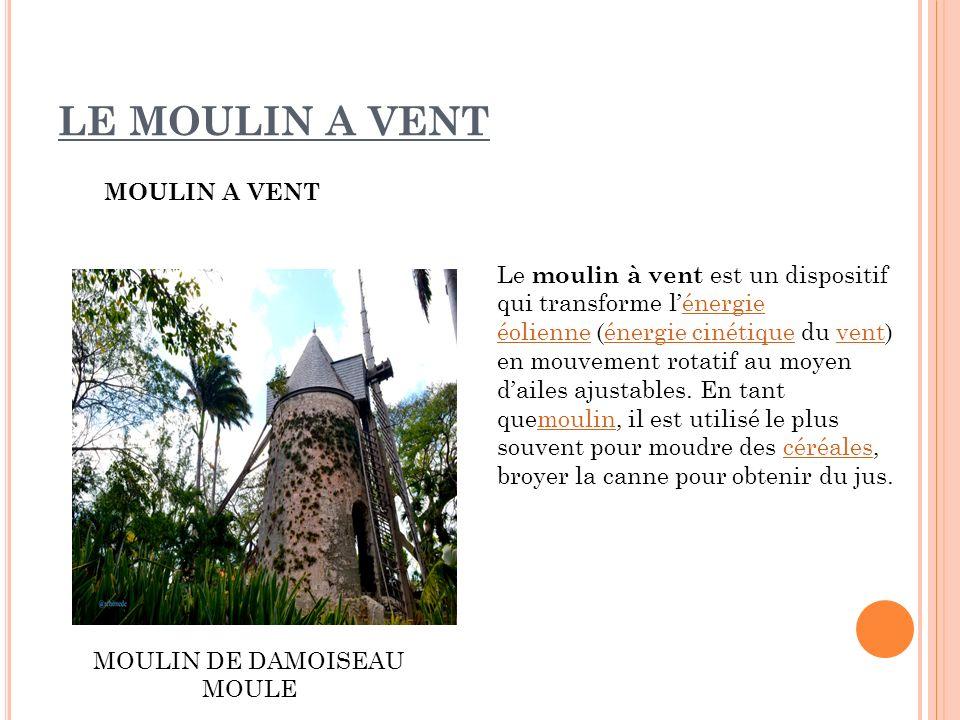 LE MOULIN A VENT MOULIN A VENT MOULIN DE DAMOISEAU MOULE Le moulin à vent est un dispositif qui transforme lénergie éolienne (énergie cinétique du ven