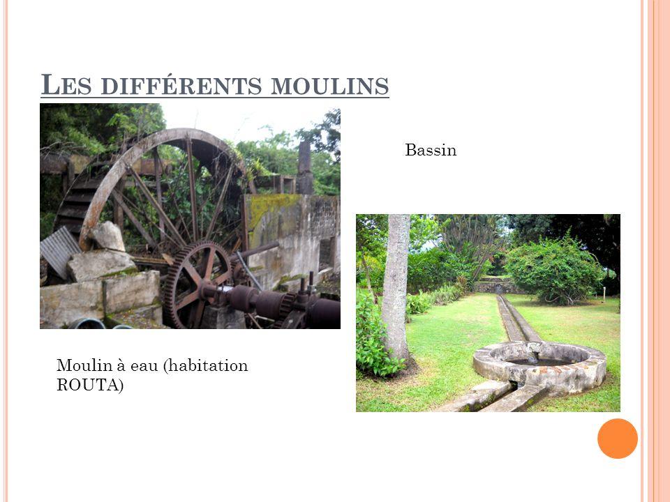L ES DIFFÉRENTS MOULINS Moulin à eau (habitation ROUTA) Bassin