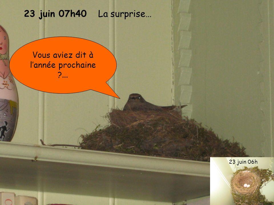 23 juin 07h40 La surprise… Vous aviez dit à lannée prochaine ?... 23 juin 06h