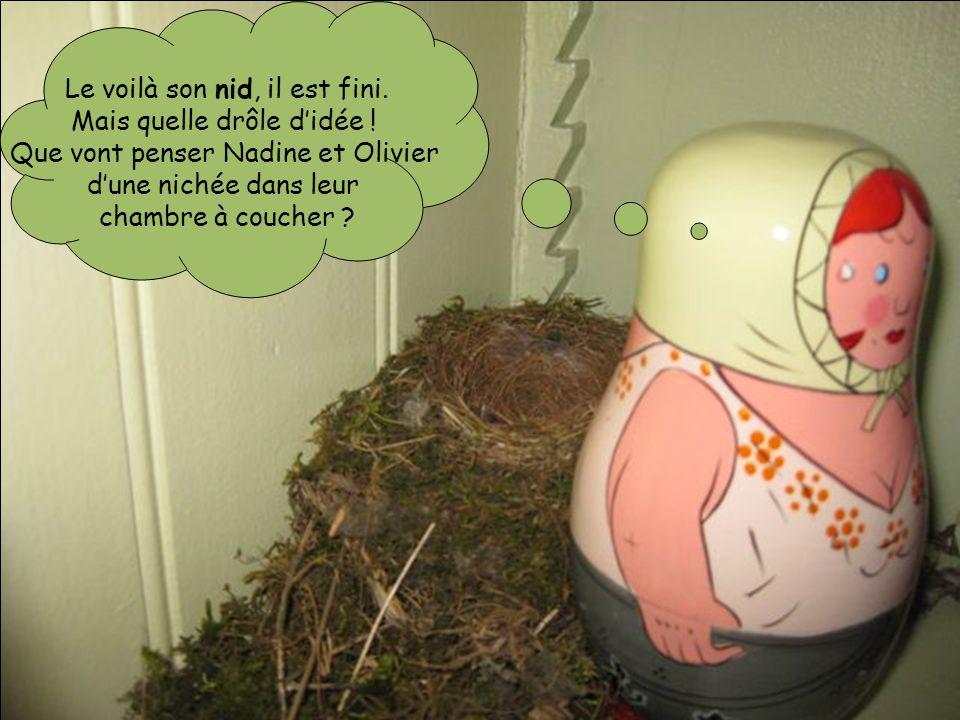 Le voilà son nid, il est fini. Mais quelle drôle didée ! Que vont penser Nadine et Olivier dune nichée dans leur chambre à coucher ?