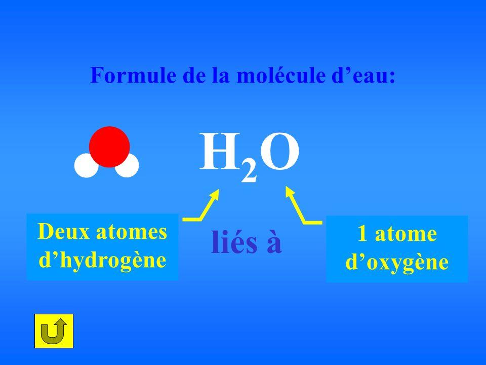 Formule de la molécule deau: H 2 O Deux atomes dhydrogène 1 atome doxygène liés à