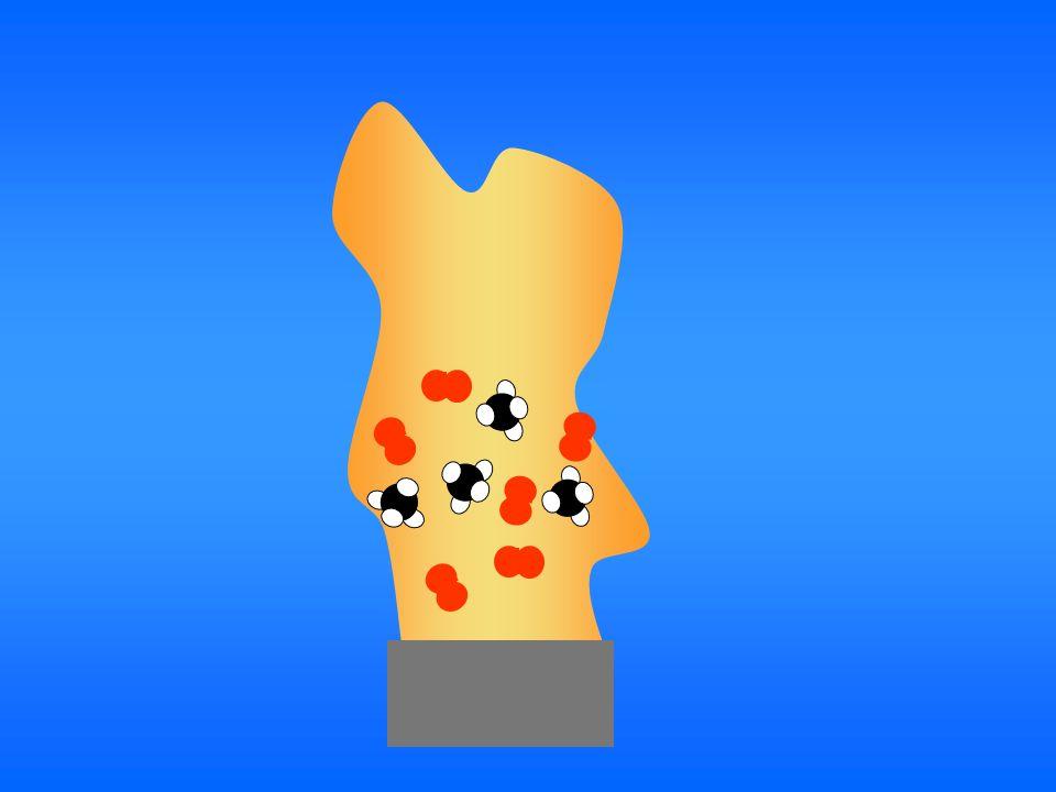 Il faut répertorier et compter les molécules qui ont participé à la combustion et procéder de la même manière avec les nouvelles molécules formées.