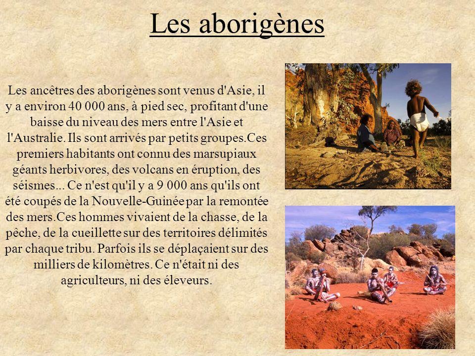 Les aborigènes Les ancêtres des aborigènes sont venus d'Asie, il y a environ 40 000 ans, à pied sec, profitant d'une baisse du niveau des mers entre l