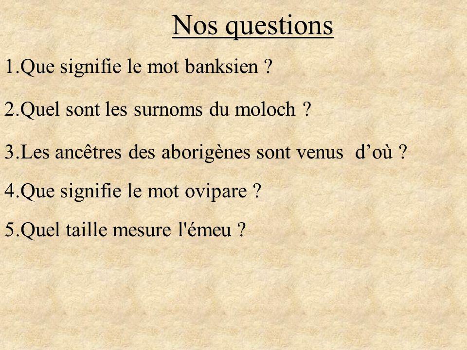 Nos questions 1.Que signifie le mot banksien ? 2.Quel sont les surnoms du moloch ? 3.Les ancêtres des aborigènes sont venus doù ? 4.Que signifie le mo