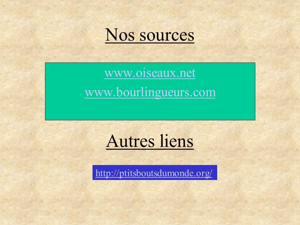 Nos sources www.oiseaux.net www.bourlingueurs.com Autres liens http://ptitsboutsdumonde.org/