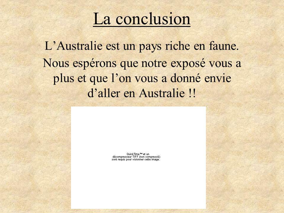 La conclusion LAustralie est un pays riche en faune. Nous espérons que notre exposé vous a plus et que lon vous a donné envie daller en Australie !!