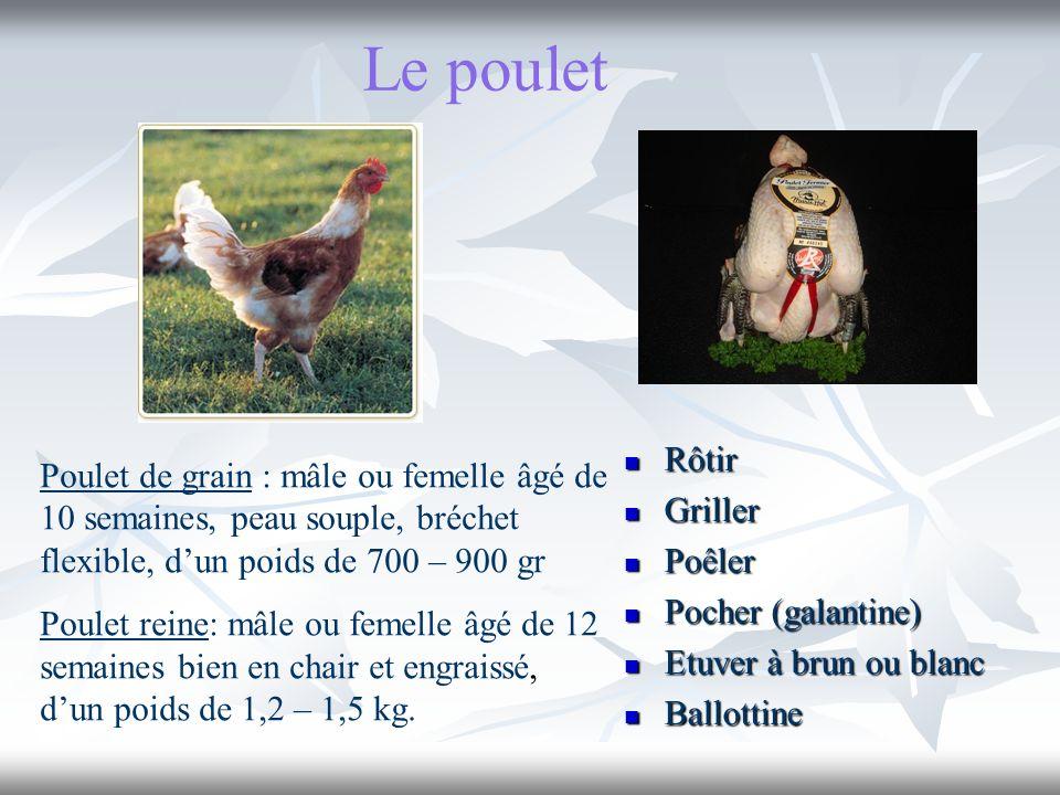 Le poulet Poulet de grain : mâle ou femelle âgé de 10 semaines, peau souple, bréchet flexible, dun poids de 700 – 900 gr Poulet reine: mâle ou femelle