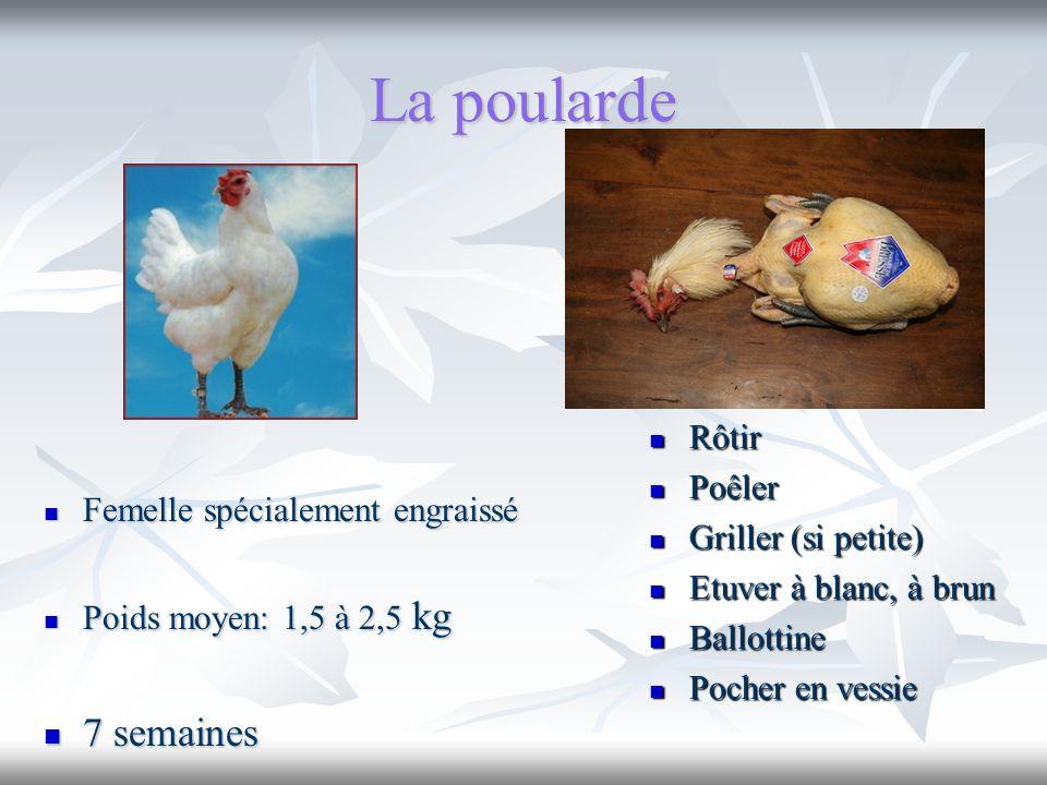 La poularde Femelle spécialement engraissé Femelle spécialement engraissé Poids moyen: 1,5 à 2,5 kg Poids moyen: 1,5 à 2,5 kg 7 semaines 7 semaines Rô