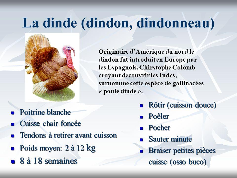 La dinde (dindon, dindonneau) Poitrine blanche Poitrine blanche Cuisse chair foncée Cuisse chair foncée Tendons à retirer avant cuisson Tendons à reti