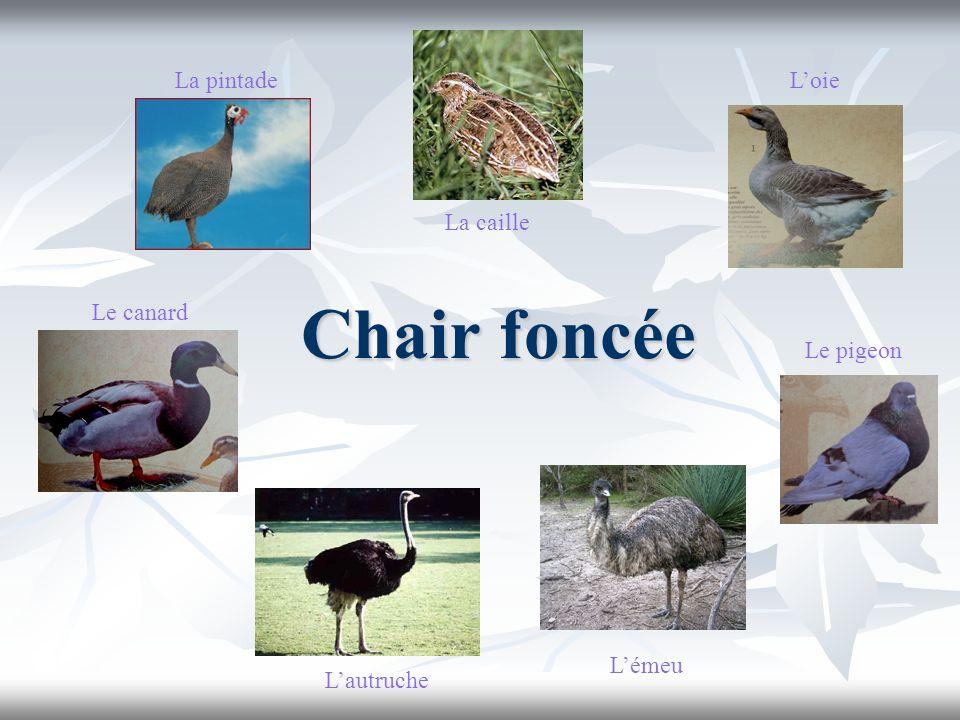 Chair foncée Lautruche Le pigeon Loie Le canard La caille La pintade Lémeu