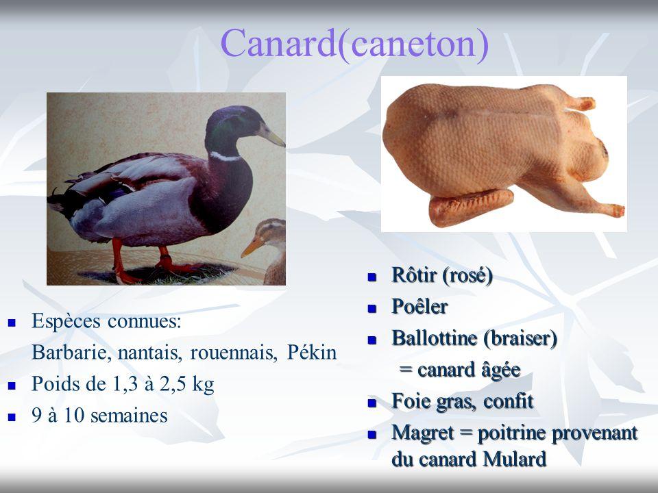 Canard(caneton) Rôtir (rosé) Rôtir (rosé) Poêler Poêler Ballottine (braiser) Ballottine (braiser) = canard âgée = canard âgée Foie gras, confit Foie g