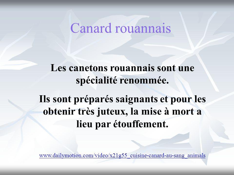Canard rouannais Les canetons rouannais sont une spécialité renommée. Ils sont préparés saignants et pour les obtenir très juteux, la mise à mort a li