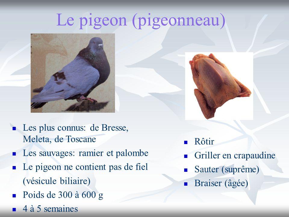Le pigeon (pigeonneau) Rôtir Griller en crapaudine Sauter (suprême) Braiser (âgée) Les plus connus: de Bresse, Meleta, de Toscane Les sauvages: ramier