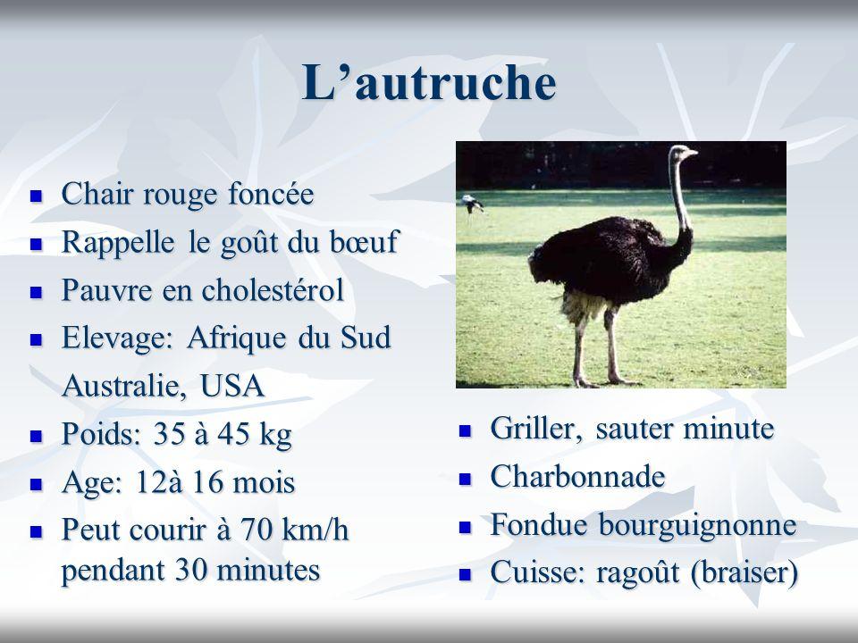 Lautruche Chair rouge foncée Chair rouge foncée Rappelle le goût du bœuf Rappelle le goût du bœuf Pauvre en cholestérol Pauvre en cholestérol Elevage: