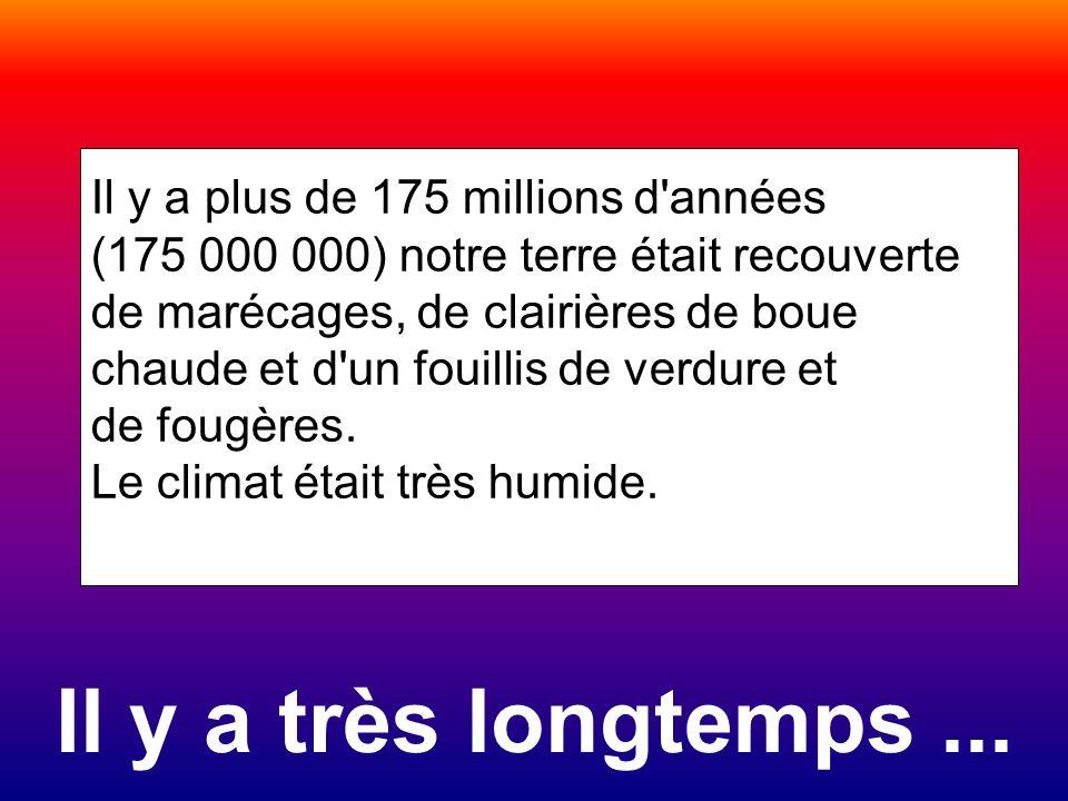 Il y a très longtemps... Il y a plus de 175 millions d'années (175 000 000) notre terre était recouverte de marécages, de clairières de boue chaude et