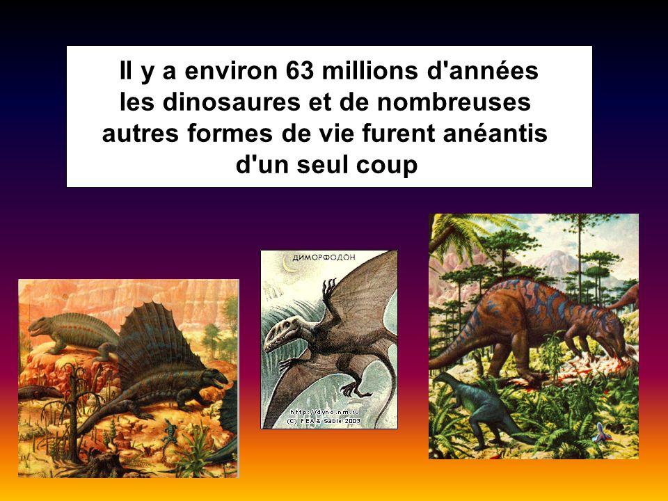 Il y a environ 63 millions d'années les dinosaures et de nombreuses autres formes de vie furent anéantis d'un seul coup