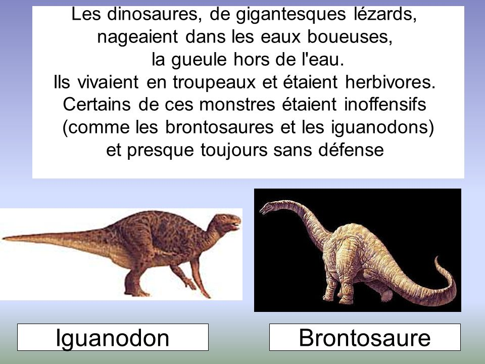 Les dinosaures, de gigantesques lézards, nageaient dans les eaux boueuses, la gueule hors de l'eau. Ils vivaient en troupeaux et étaient herbivores. C