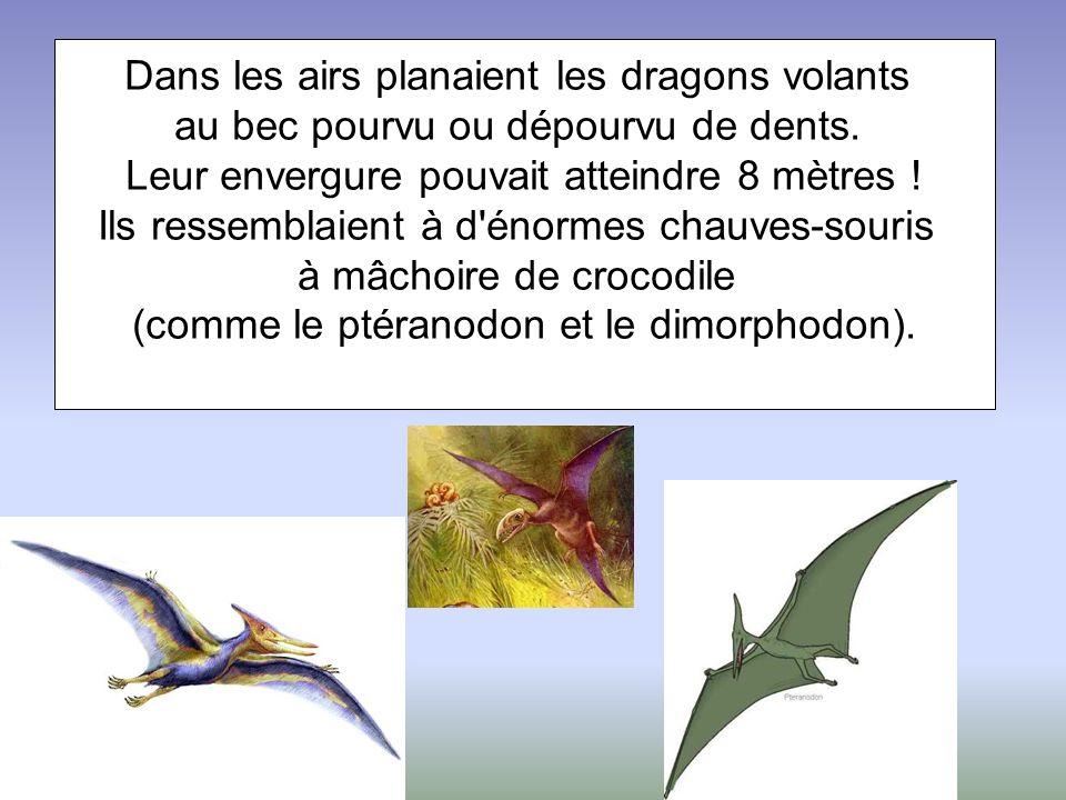 Dans les airs planaient les dragons volants au bec pourvu ou dépourvu de dents. Leur envergure pouvait atteindre 8 mètres ! Ils ressemblaient à d'énor