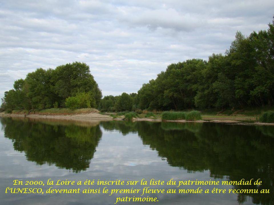La Loire abrite de nombreuses espèces d oiseaux tel que le balbuzard pêcheur, le râle des genêts, le sterne pierregarin, le cormoran huppé, le héron cendré ou pourpré, l aigrette garzette et bien d autres...