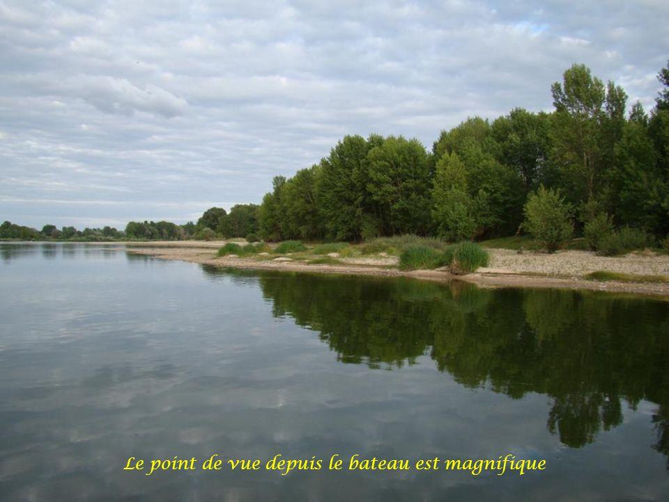 En 2000, la Loire a été inscrite sur la liste du patrimoine mondial de l UNESCO, devenant ainsi le premier fleuve au monde a être reconnu au patrimoine.