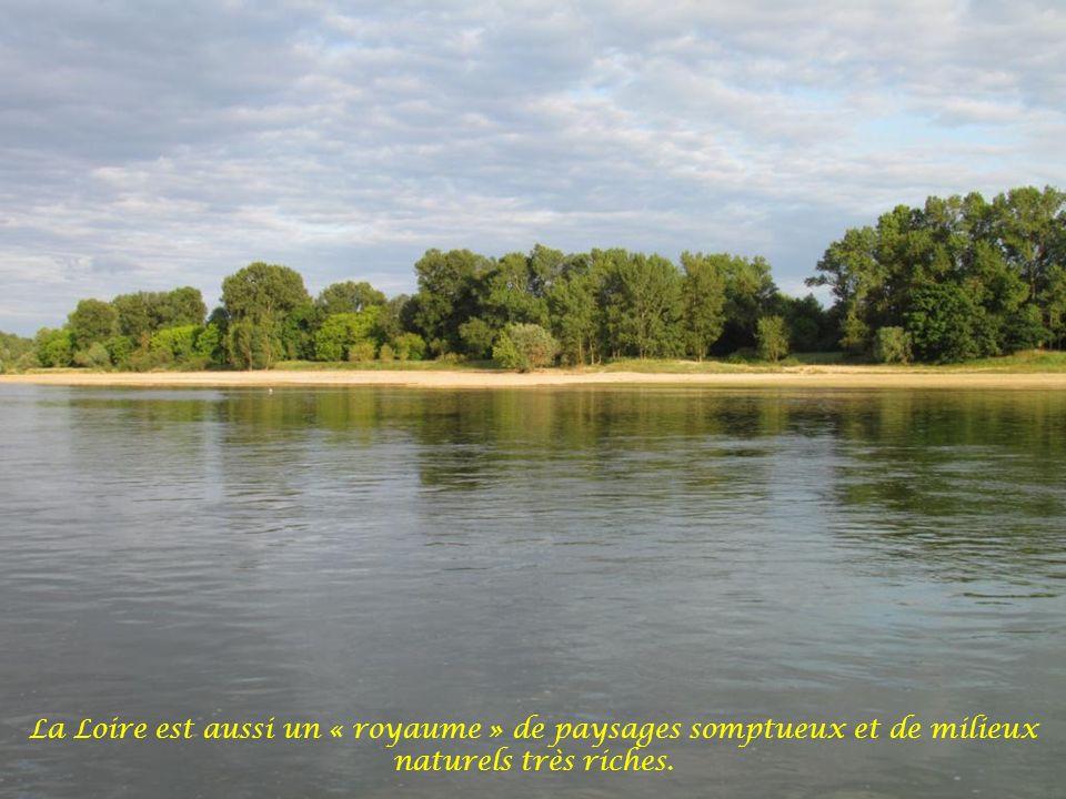 La Loire est souvent présentée comme le « seul grand fleuve sauvage » survivant en France