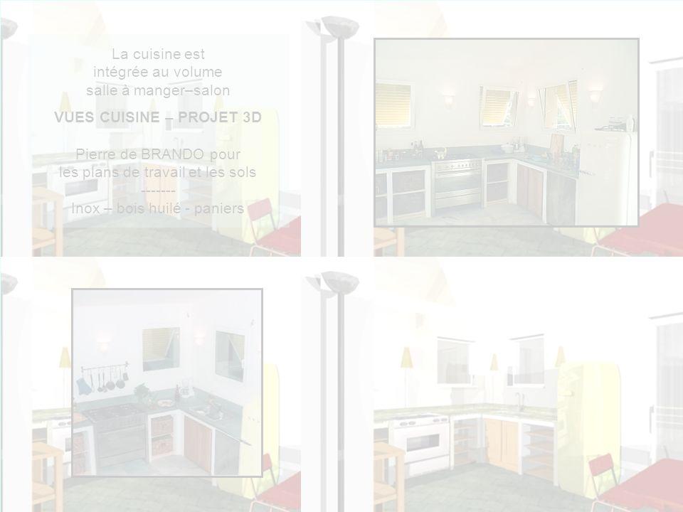 La cuisine est intégrée au volume salle à manger–salon VUES CUISINE – PROJET 3D Pierre de BRANDO pour les plans de travail et les sols ------- Inox – bois huilé - paniers