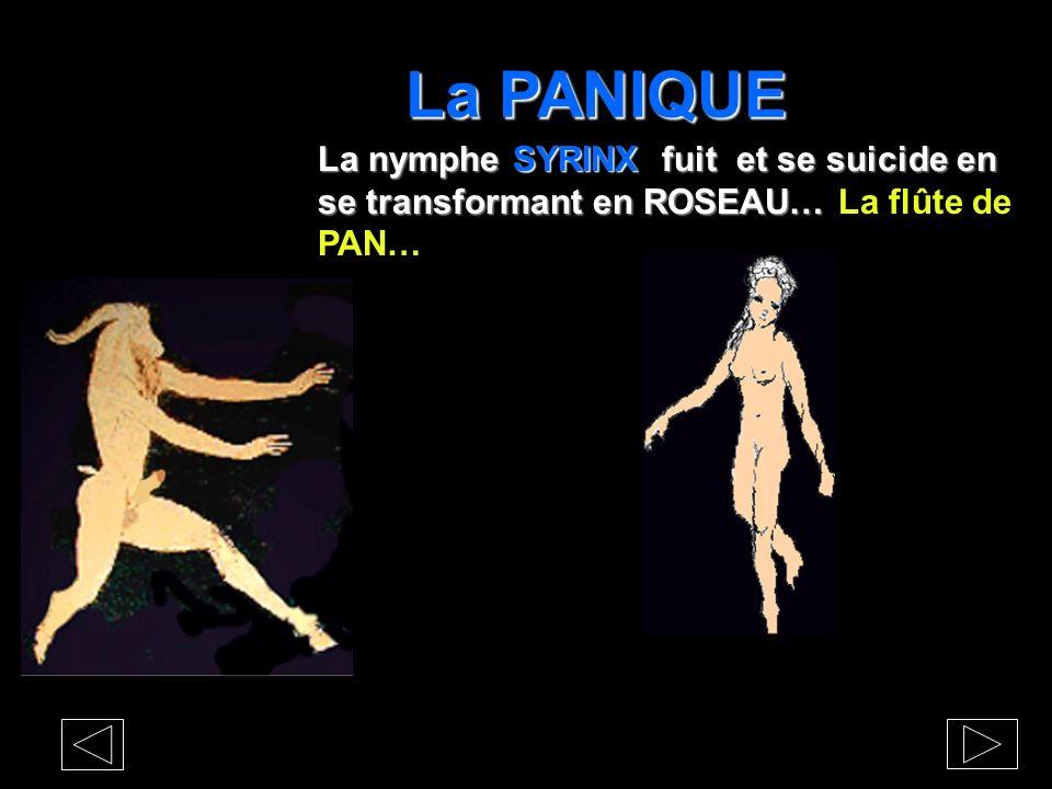 La PANIQUE Le DIEU PAN ne peut résister à La JOUISSANCE La JOUISSANCE se déplace dans celle de la CHASSE, dans le pouvoir de créer la panique, dexerce