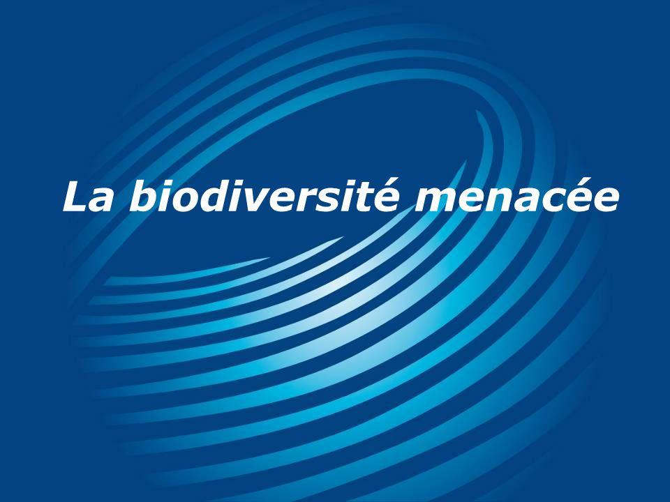 La biodiversité menacée