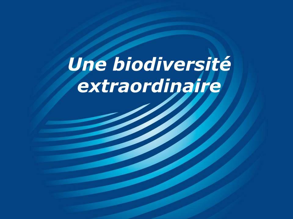 Une biodiversité extraordinaire