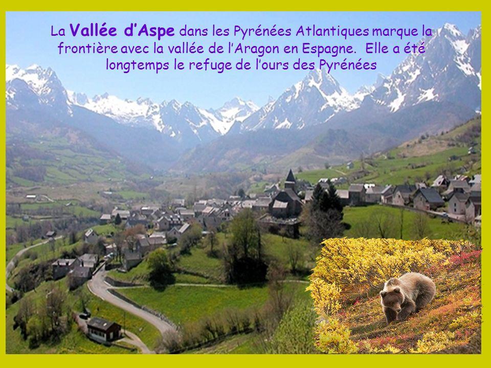 Le Petit Train dArtouste, le plus haut dEurope, circule à 2000 m daltitude en Vallée dOssau Il offre une vue imprenable sur le « Jean-Pierre » ou la «
