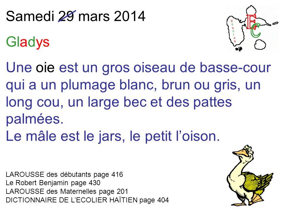 Samedi 29 mars 2014 Gladys Une oie est un gros oiseau de basse-cour qui a un plumage blanc, brun ou gris, un long cou, un large bec et des pattes palmées.