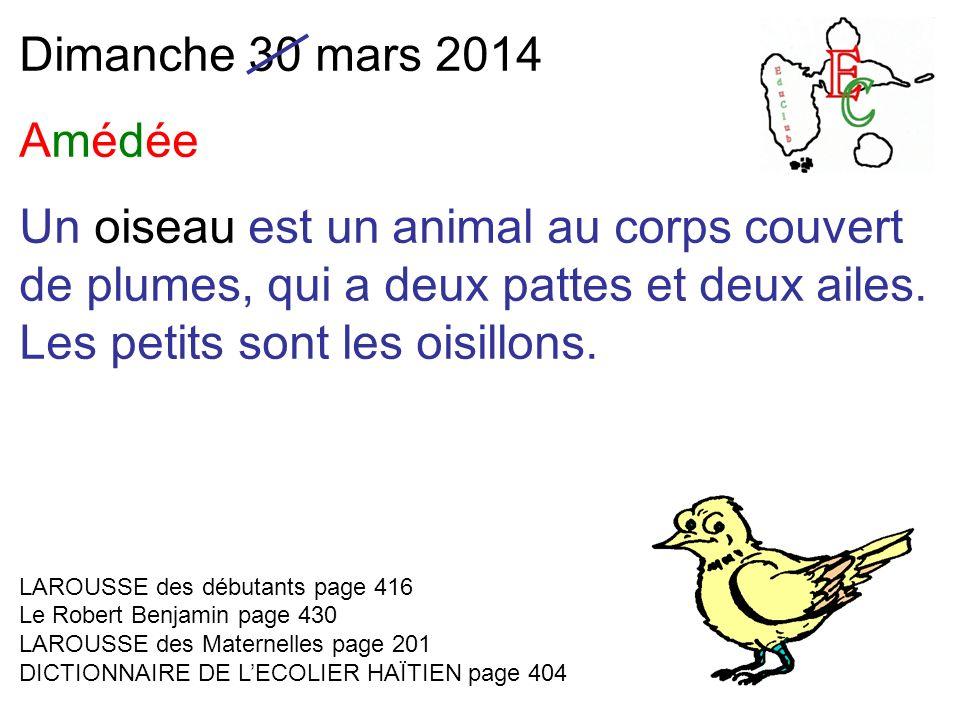 Dimanche 30 mars 2014 Amédée Un oiseau est un animal au corps couvert de plumes, qui a deux pattes et deux ailes.