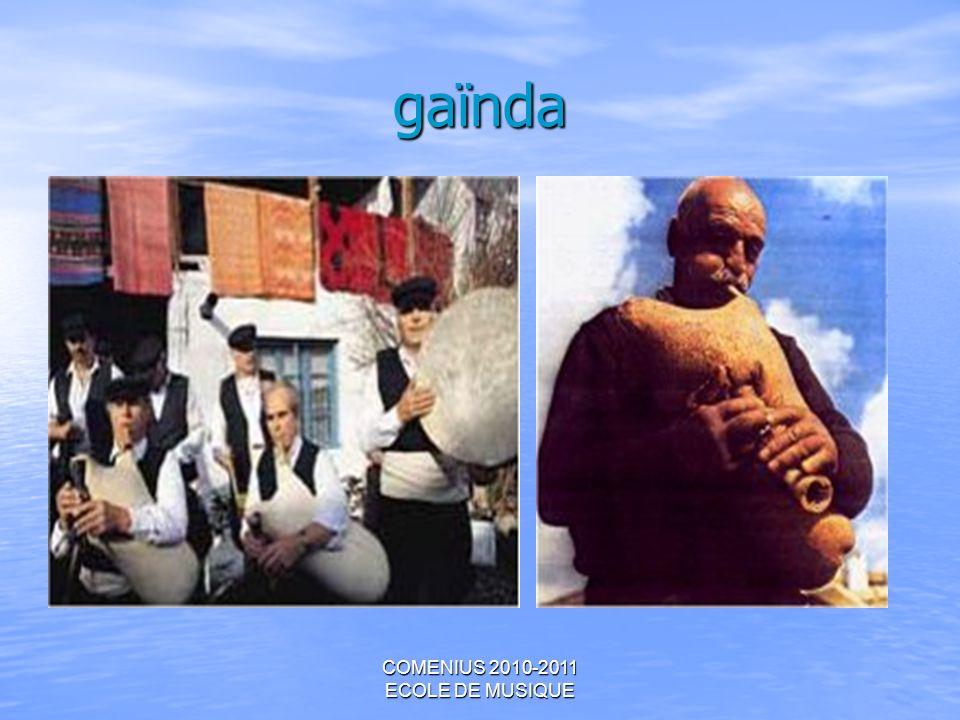 COMENIUS 2010-2011 ECOLE DE MUSIQUE gaïnda