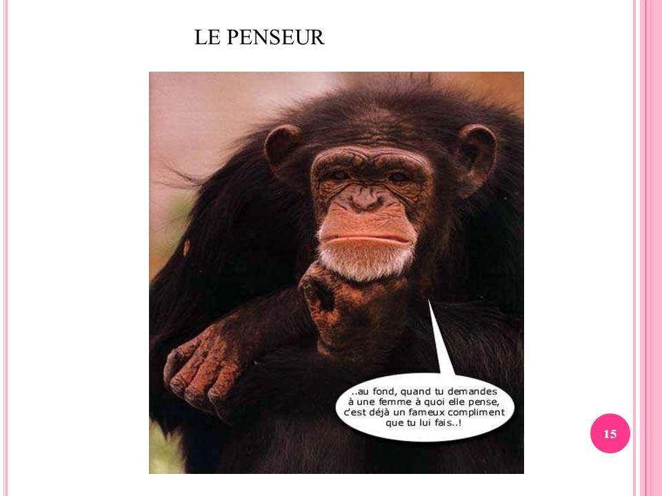 15 LE PENSEUR