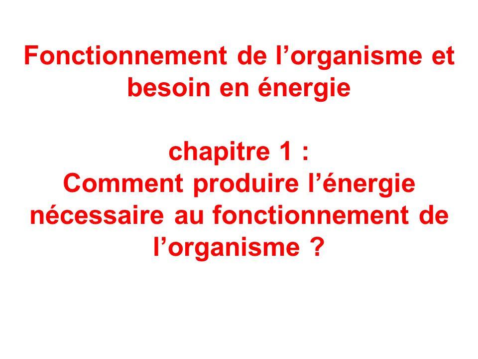 Fonctionnement de lorganisme et besoin en énergie chapitre 1 : Comment produire lénergie nécessaire au fonctionnement de lorganisme ?