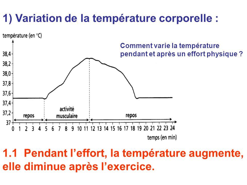 1) Variation de la température corporelle : Comment varie la température pendant et après un effort physique ? 1.1 Pendant leffort, la température aug