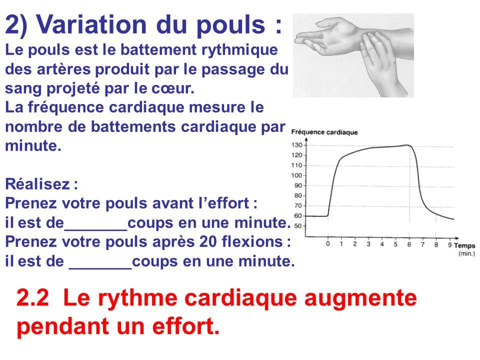 Le pouls est le battement rythmique des artères produit par le passage du sang projeté par le cœur. La fréquence cardiaque mesure le nombre de batteme