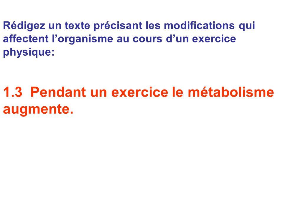 Rédigez un texte précisant les modifications qui affectent lorganisme au cours dun exercice physique: 1.3 Pendant un exercice le métabolisme augmente.