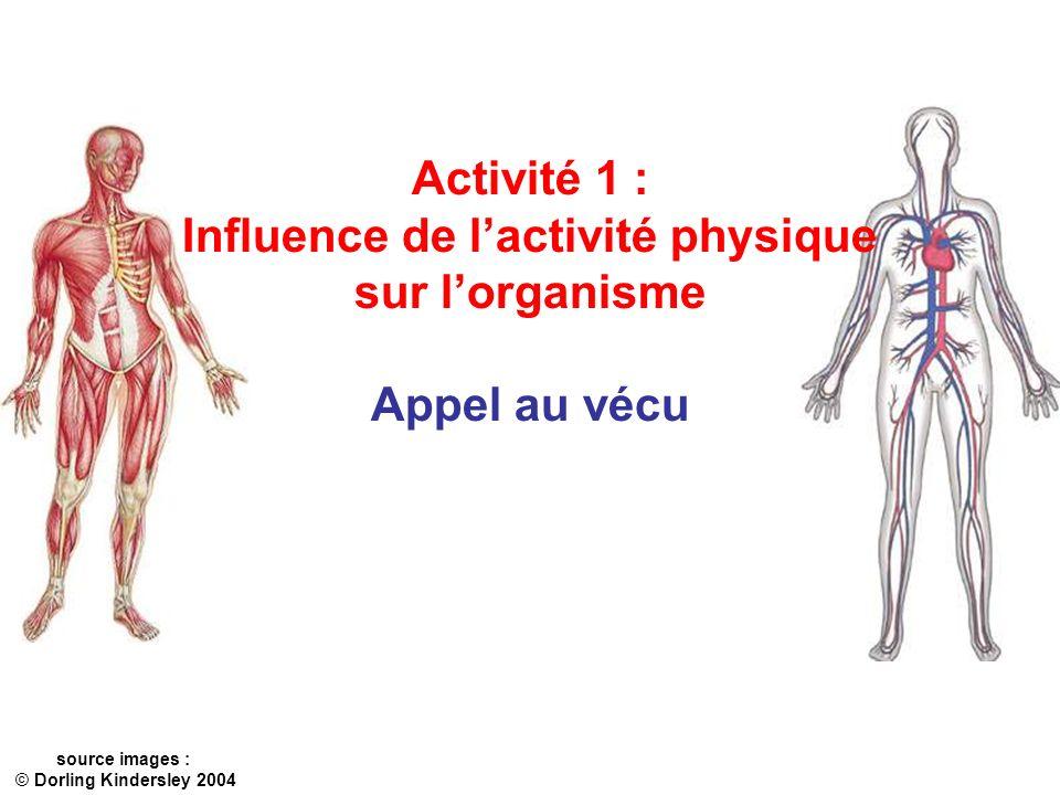 Activité 1 : Influence de lactivité physique sur lorganisme Appel au vécu source images : © Dorling Kindersley 2004