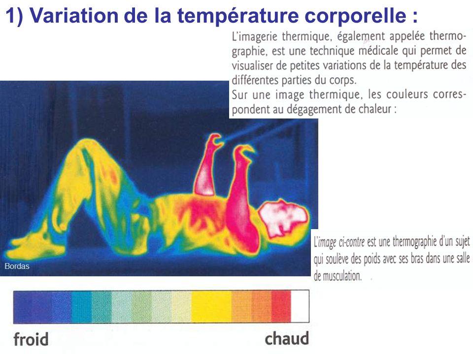 Bordas 1) Variation de la température corporelle :