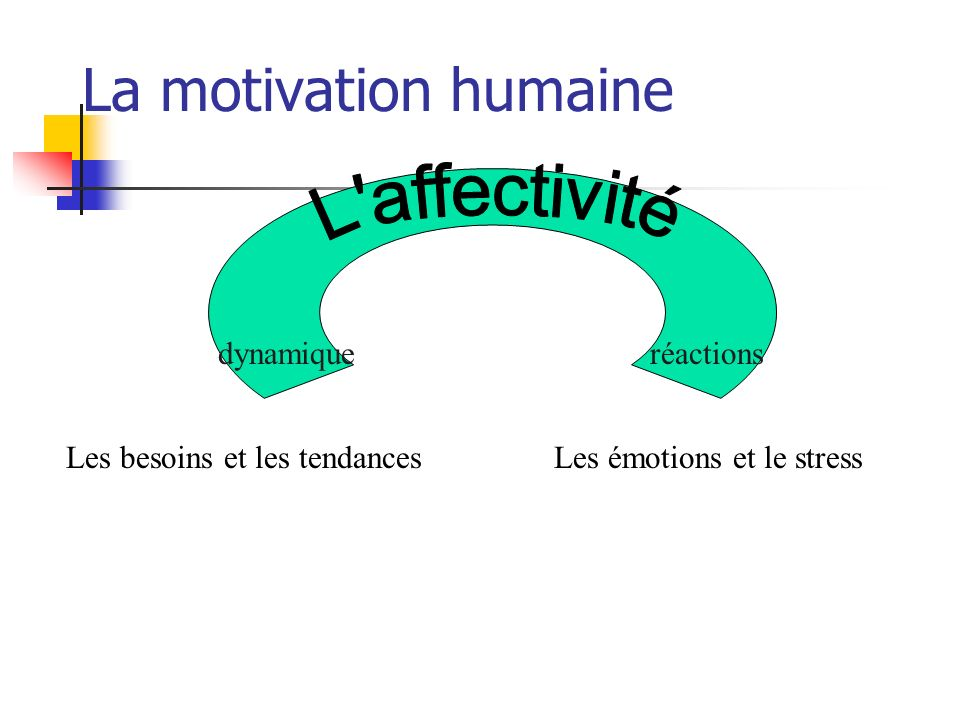 La motivation Les comportements motivés ont une fonction dautorégulation, car ils servent, en conjonction avec les mécanismes physiologiques, à rétablir léquilibre interne (au sens large).