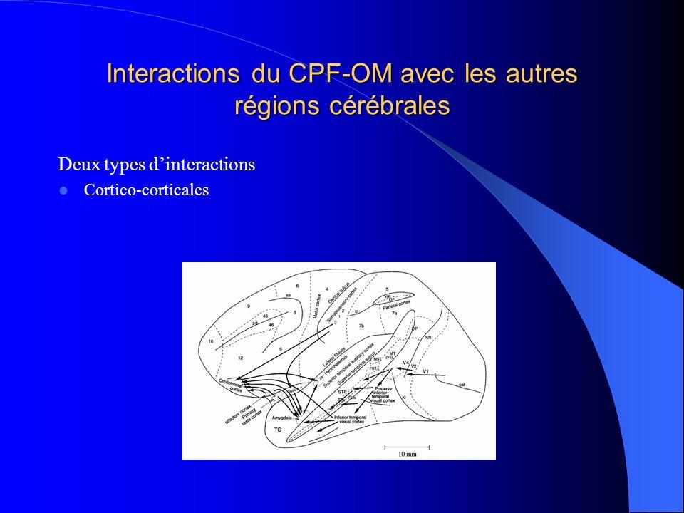 Interactions du CPF-OM avec les autres régions cérébrales Deux types dinteractions Cortico-corticales