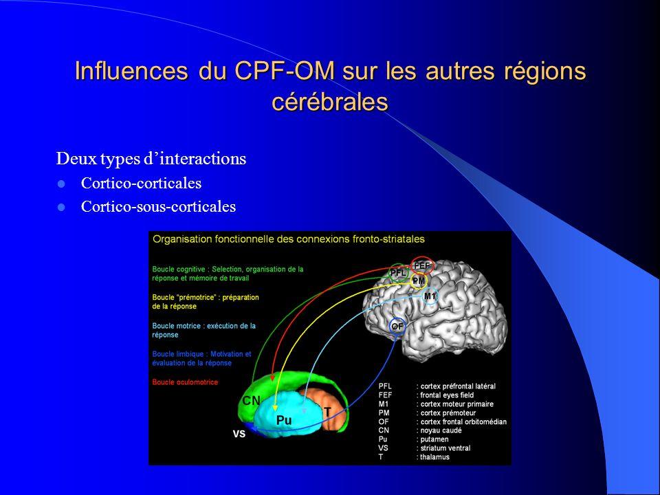 Influences du CPF-OM sur les autres régions cérébrales Deux types dinteractions Cortico-corticales Cortico-sous-corticales