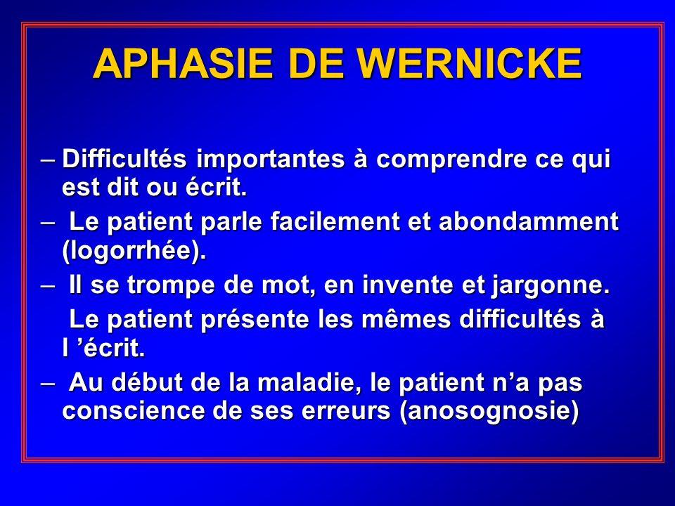 APHASIE DE WERNICKE –Difficultés importantes à comprendre ce qui est dit ou écrit. – Le patient parle facilement et abondamment (logorrhée). – Il se t