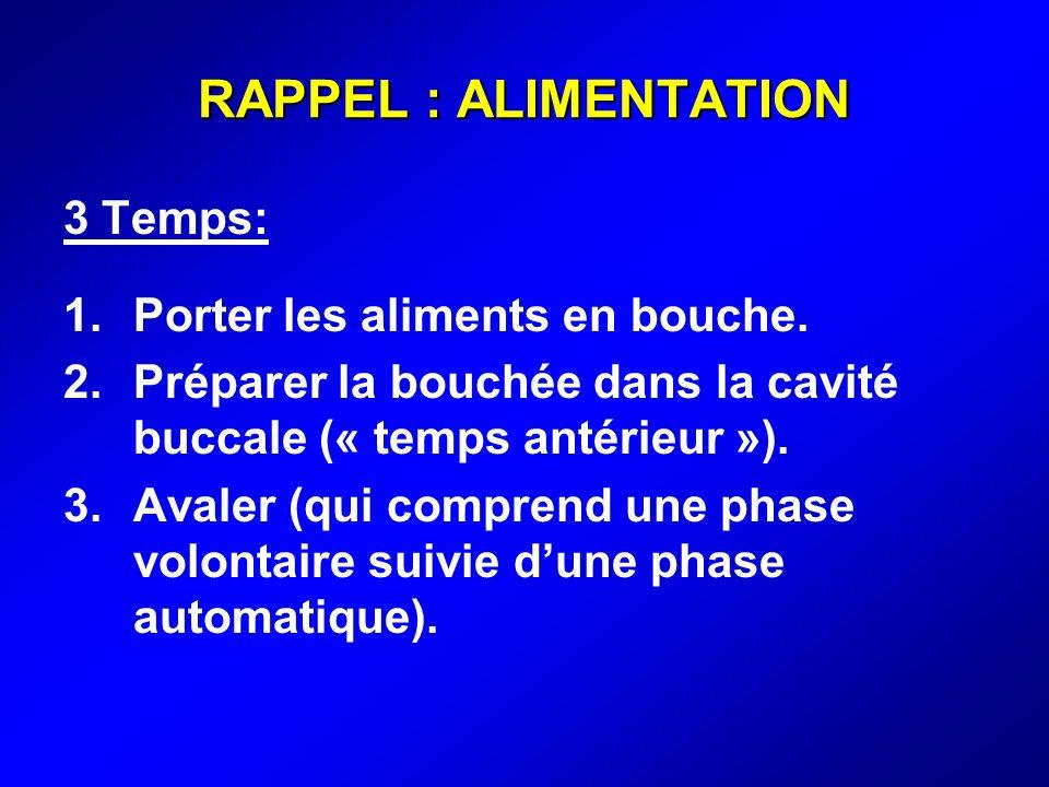 RAPPEL : ALIMENTATION 3 Temps: 1.Porter les aliments en bouche. 2.Préparer la bouchée dans la cavité buccale (« temps antérieur »). 3.Avaler (qui comp