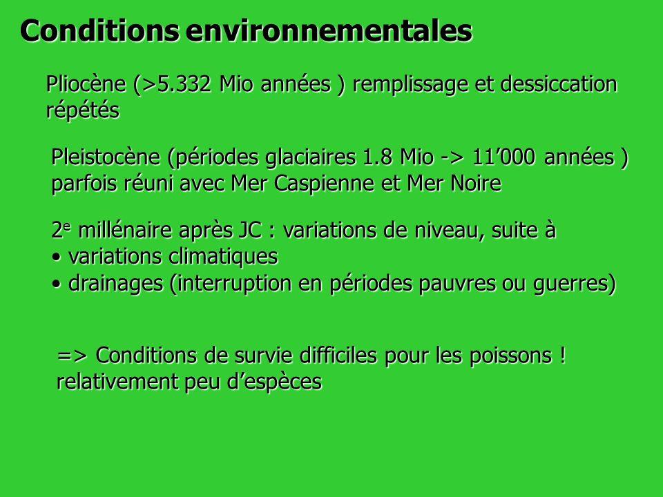 Conditions environnementales Pliocène (>5.332 Mio années ) remplissage et dessiccation répétés Pleistocène (périodes glaciaires 1.8 Mio -> 11000 année