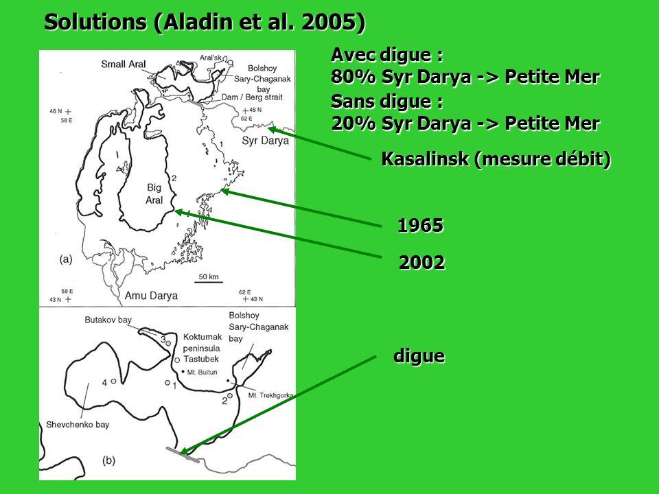 Solutions (Aladin et al. 2005) 1965 2002 digue Avec digue : 80% Syr Darya -> Petite Mer Sans digue : 20% Syr Darya -> Petite Mer Kasalinsk (mesure déb