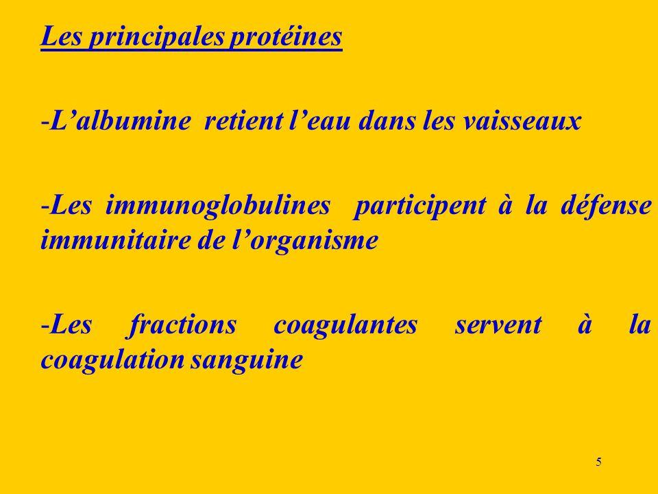 5 Les principales protéines -Lalbumine retient leau dans les vaisseaux -Les immunoglobulines participent à la défense immunitaire de lorganisme -Les f