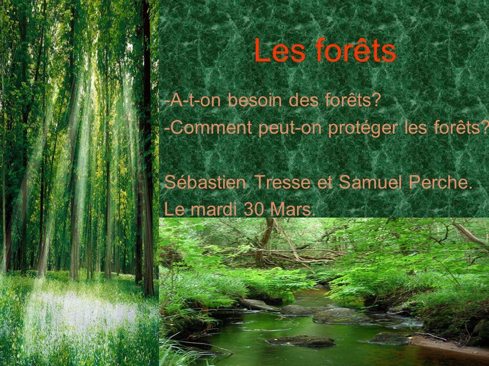 Les forêts -A-t-on besoin des forêts.-Comment peut-on protéger les forêts.
