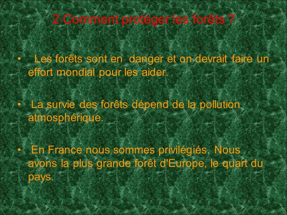2 Comment protéger les forêts .